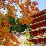 [:ja]長谷寺の秋色[:en]Hase-dera Temple[:]
