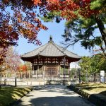 [:ja]鮮やか興福寺[:en]Kohfukuji Temple[:]
