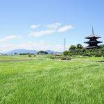 法起寺夏の日